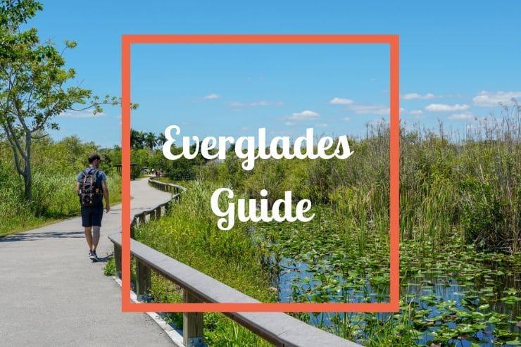 Everglades Guide