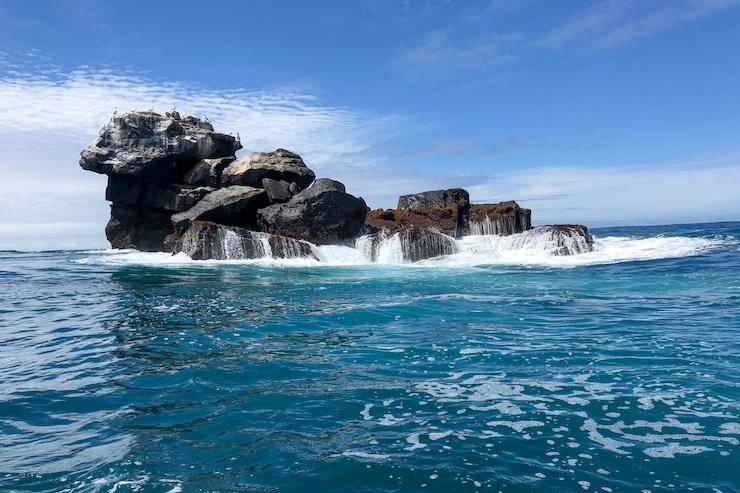 Galapagos Vogelfelsen im Meer