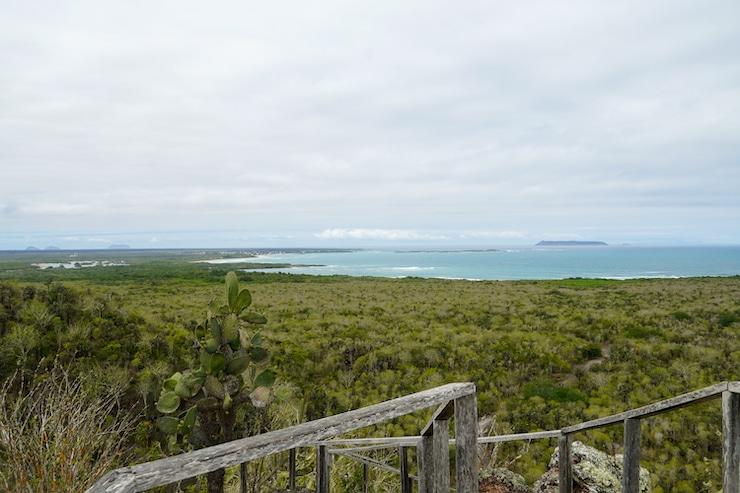 Galapagos Isabela Aussichtsplattform