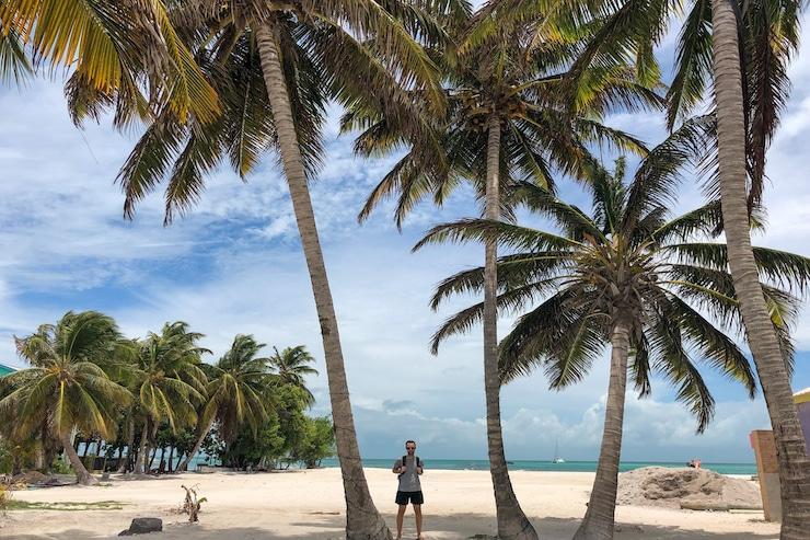 Mann unter meterhohen Palmen auf Caye Caulker